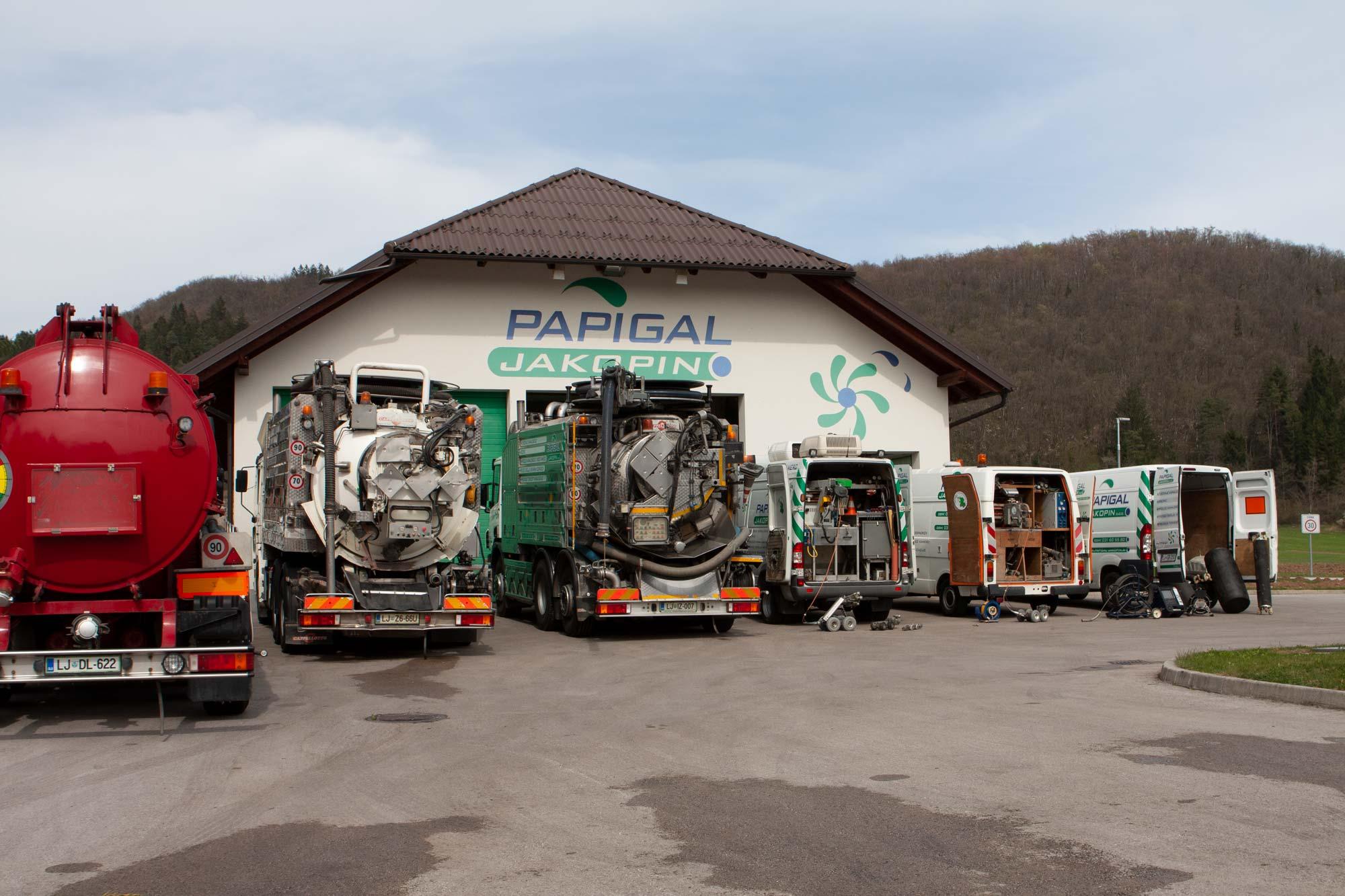 papigal-3